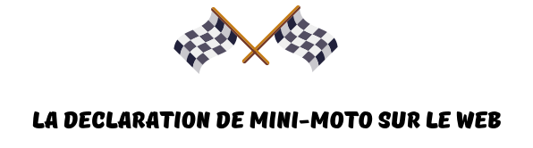 declaration internet mini-moto