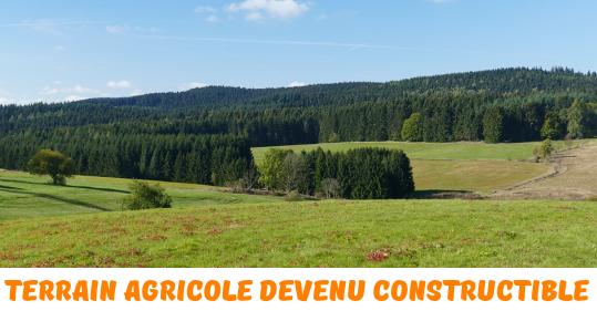 Terrain agricole devenu constructible la taxe sur la plus for Peut on construire sur terrain agricole