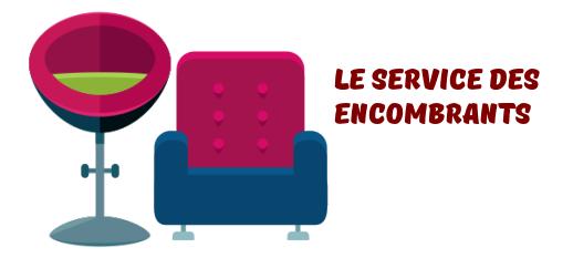 service encombrants Villeurbanne